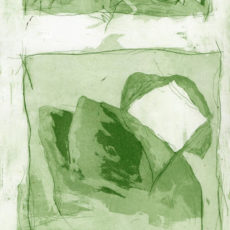 Dolphin dreaming, kleurets, 1997