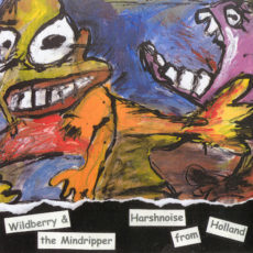 vinyl single by Wildberry & the Mindripper, released by HardBeat traxx, front cover