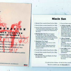Niacin Sun – compilation CD released by Tedium House Publications, USA. with promo flyer