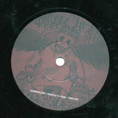 Nothing To Hide by Downslide, vinyl single